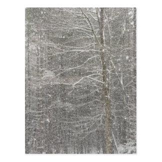 El caer de la nieve postales