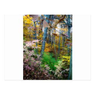 El caer de las hojas tarjetas postales