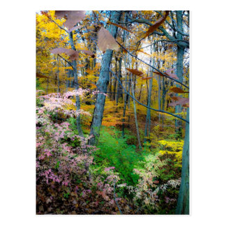 El caer de las hojas postal