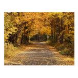El caer deja los regalos del hogar del otoño del | postal