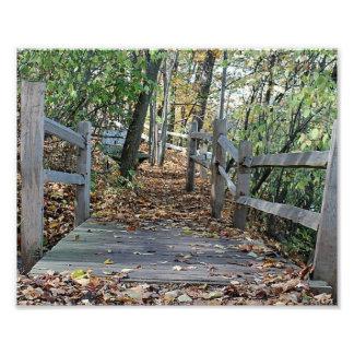 El caer en el lugar - imagen del puente de madera  cojinete