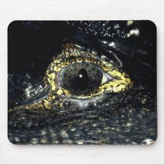 El caimán observa Mousepad Alfombrillas De Ratón