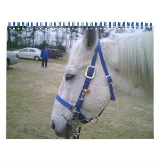 El calendario del amante del caballo