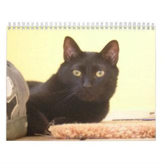 El calendario del amante del gato