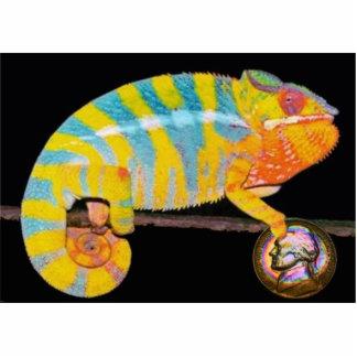 El camaleón de la moneda llavero fotográfico