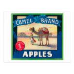 El camello Apple etiqueta - el estado de Washingto Tarjetas Postales