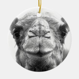 El camello besa la foto del primer de la diversión adorno redondo de cerámica