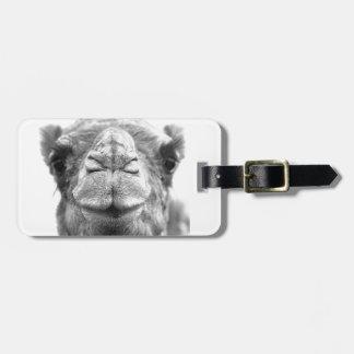 El camello besa la foto del primer de la diversión etiquetas para equipaje