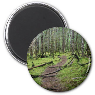 El caminar a través de las maderas imán redondo 5 cm