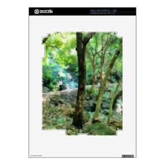 El caminar a través del bosque iPad 2 calcomanías