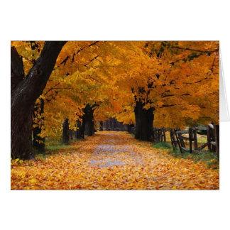 El caminar abajo del tiempo pasado del otoño tarjeta de felicitación