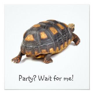 El caminar de la tortuga de Redfoot Invitación Personalizada