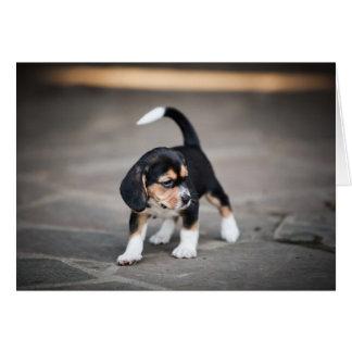 El caminar del beagle del bebé tarjetas