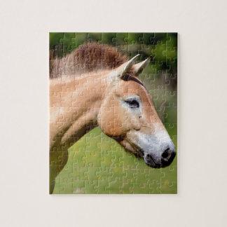 El caminar del caballo de Przewalski Puzzle Con Fotos