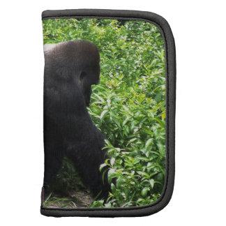 El caminar del gorila del Silverback sideway Planificadores