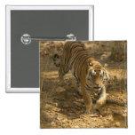 El caminar del tigre de Bengala Pin