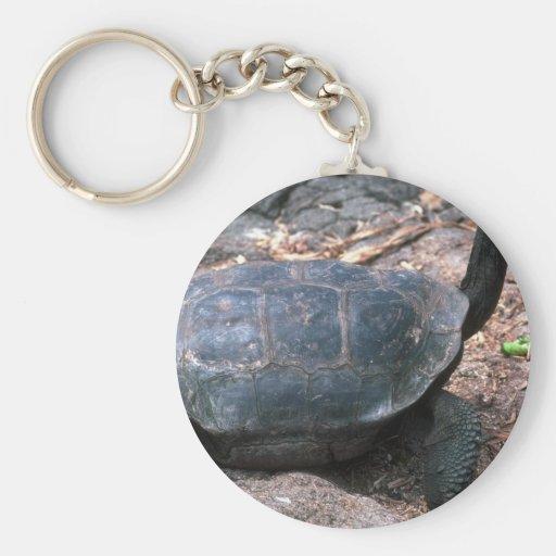 El caminar en forma de cúpula gigante de la tortug llavero personalizado