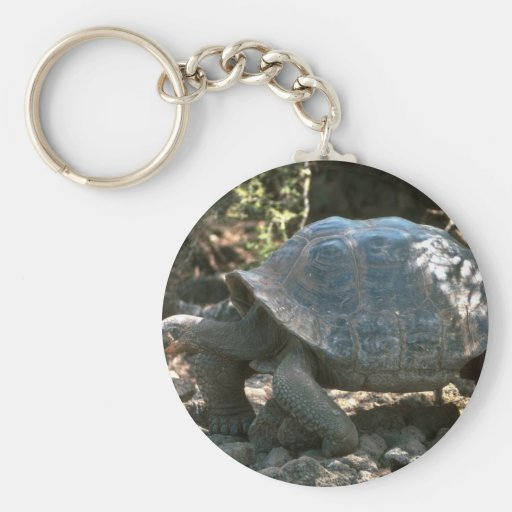 El caminar en forma de cúpula gigante de la tortug llaveros personalizados