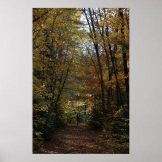 El caminar en los colores del otoño impresiones