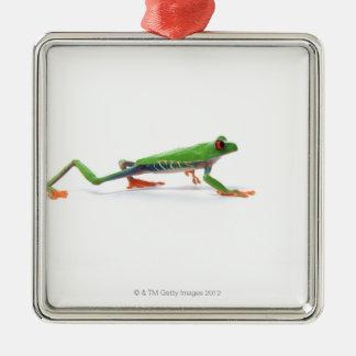 El caminar observado rojo de la rana arbórea adorno de navidad