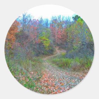 El caminar profundamente en las maderas pegatina redonda