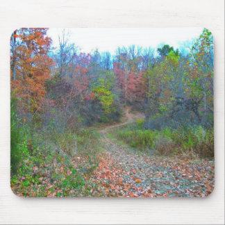 El caminar profundamente en las maderas tapete de raton
