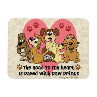 El camino a mis perros del corazón iman