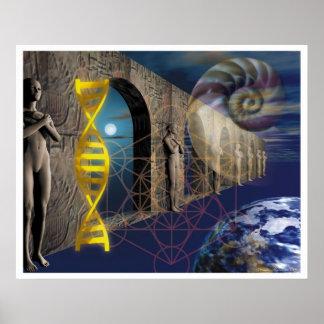 El camino de la evolución impresiones