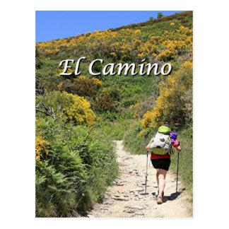 EL Camino de Santiago de Compostela, España, Postal