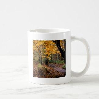 El camino del otoño viajó menos taza básica blanca