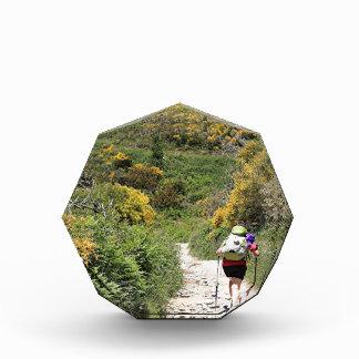 El Camino, Molinaseca to O'Cebreiro, Spain Acrylic Award
