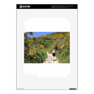 El Camino, Molinaseca to O'Cebreiro, Spain Skins For iPad 3