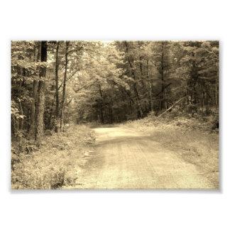 El camino viaja la impresión fotográfica 5x7