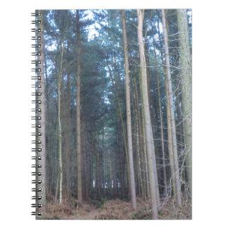 El camino viajó menos a través del bosque de Delam Cuadernos