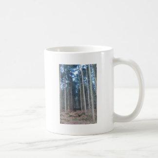 El camino viajó menos a través del bosque de taza básica blanca