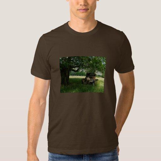 El camión del abuelo debajo del árbol playera