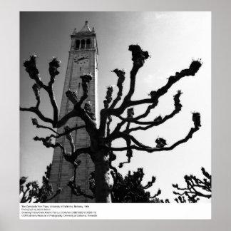 El campanil de Plaza, Uc Berkeley, 1964 Póster