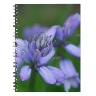 El Campanula azul florece el cuaderno