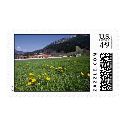 el campo amarillo con el monasterio de Ettal, Envio