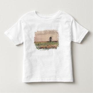 El campo de batalla de Crecy, el 26 de agosto de Camisas