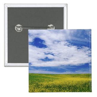 El campo de Canola o de la mostaza florece, Palous Pin Cuadrada 5 Cm