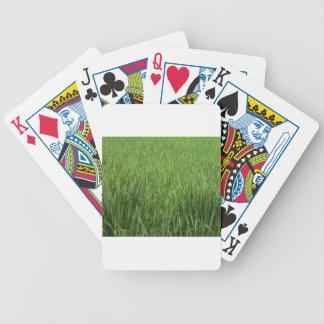 el campo de los padi verdes baraja de cartas bicycle