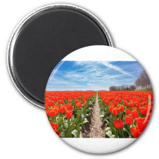 El campo de tulipanes rojos florece con el cielo imán redondo 5 cm