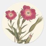 El campo hermoso del vintage florece botánico pegatinas redondas