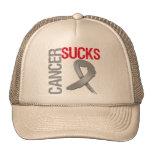 El cáncer chupa - al cáncer de cerebro gorros