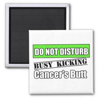 El cáncer del linfoma de Non-Hodgkins no perturba Imanes De Nevera