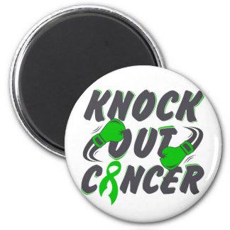 El cáncer hepático elimina al cáncer iman de nevera