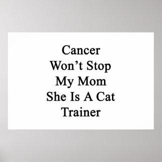 El cáncer no parará a mi mamá que ella es un instr posters