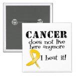 El cáncer no vive aquí más - Neuroblastoma Pins