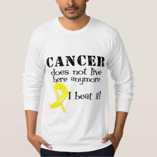 El cáncer testicular no vive aquí más playeras